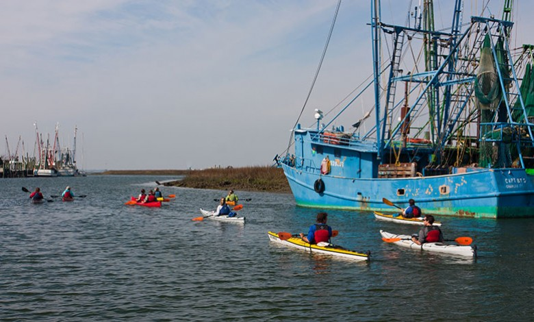 Coastal kayaking expedition in Mount Pleasant, SC